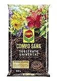 Compo Sana Universal de Calidad para macetas con 12 semanas de abono para...