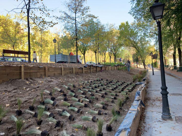Diseño de parterre y obra de paisajismo en Madrid durante obra